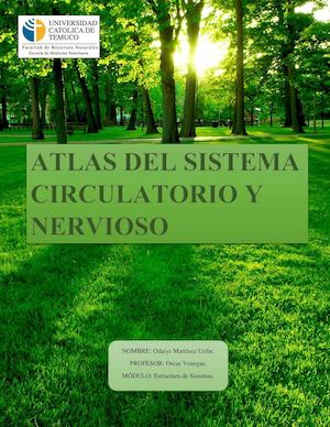 ATLAS DE SISTEMA CIRCULATORIO Y NEVIOSO