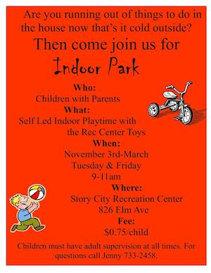 Indoor Park Flyer