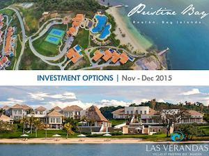 Pristine Bay Investment Options 2015