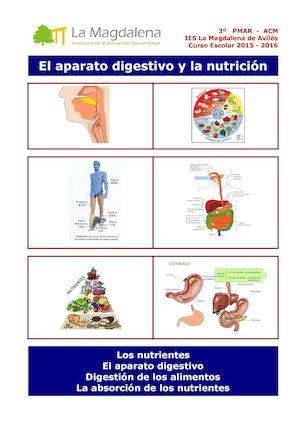 Calaméo - El aparato digestivo y la nutrición
