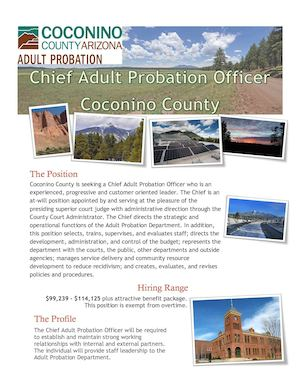 Chief Adult Probation Officer