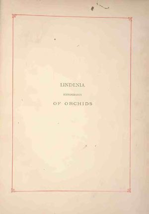 Lindenia Iconography Of Orchids