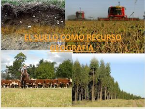 Calam o el suelo como recurso for Recurso clausula suelo