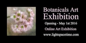 Botanicals 2016 Art Exhibition - Event Postcard