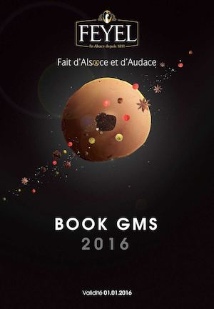 BOOK GMS 2016
