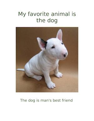 My Favorite Animal Is The Dog