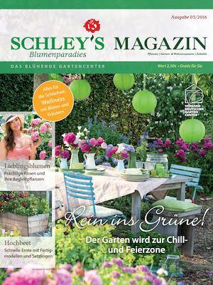 Calaméo - Schleys Blumenparadies Magazin 3-2016