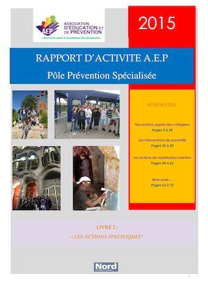 Rapport D'activité 2015 Livre 2