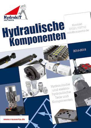 Hydraulikzylinder einfachwirkend 20//800 mm Hub