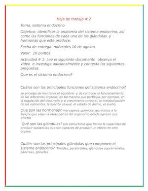 Calaméo - Hoja De Trabajo De Hanani Sistema Endocrino