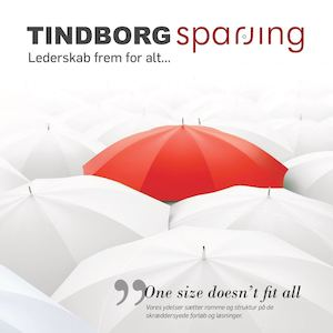 Tindborg Sparring - no links