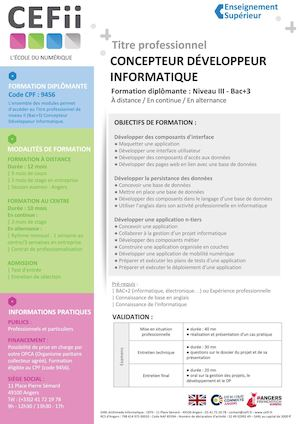 19 Programme Formation Diplomante Concepteur Developpeur Informatique Cefii