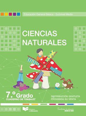 guia santillana 6 pdf para descargar