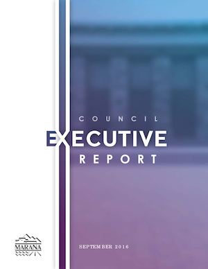Executive Report September 2016