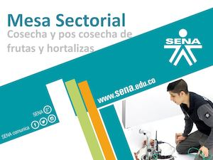 Boletin No 3 2016 Mesa Sectorial Cpfh (1)
