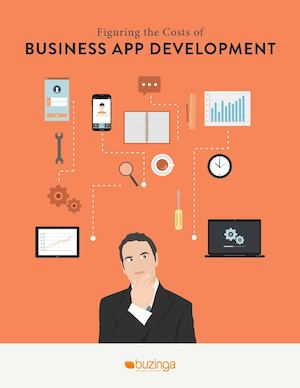 Figuring the Cost of Business App Development