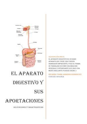 Calaméo - Proyecto De Biología EL APARATO DIGESTIVO
