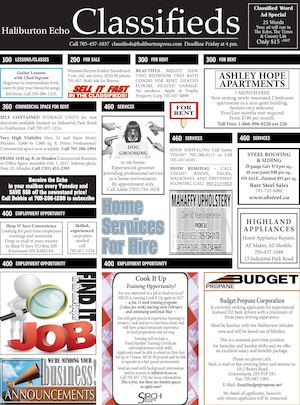 Classifieds January 3, 2017