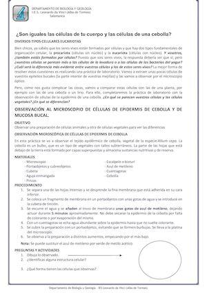 Calaméo La Célula Act 4