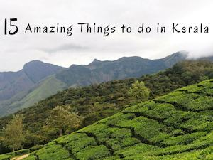 15 Unique Things That Traveller Should Not Miss in Kerala