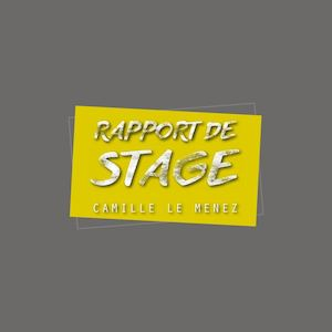 Rapport De Stage Term Interactif pdf