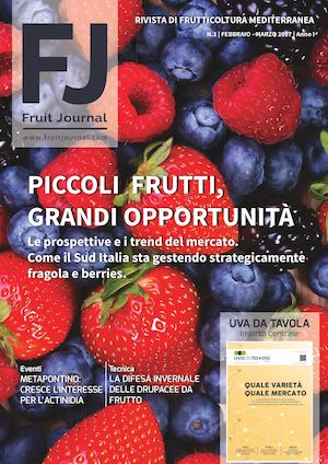 FRUIT JOURNAL - ANNO I N.1