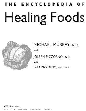 Calamo encyclopedia of healing foods encyclopedia of healing foods fandeluxe Images