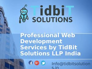 Best SEO friendly Website Development Company India – TidbiT solutions