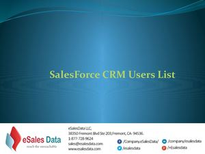 Sales Force Users List