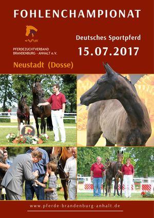 Ingo Westphal Brandenburg calaméo fohlenchionat 2017