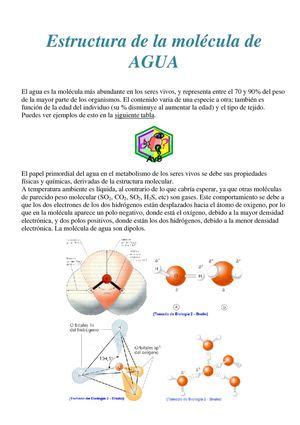 Calaméo Estructura De La Molécula De Agua