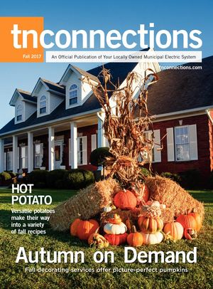 Tennessee Connections Fall 2017