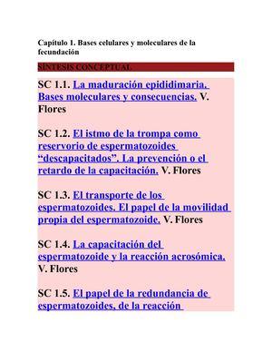 Calaméo - Sintesis Conceptuales Embriologia