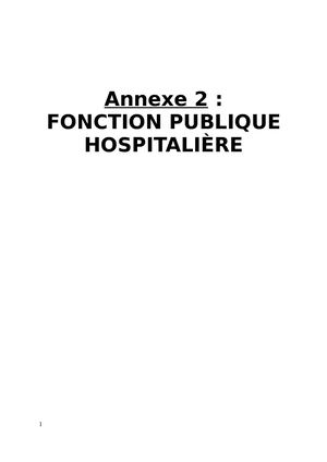 Calameo Annexe Hospitaliere Mission Interministerielle Temps De