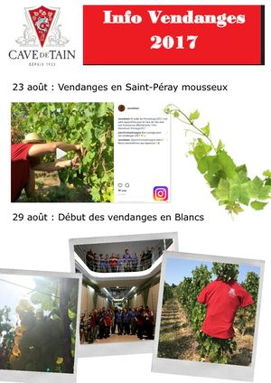 Vendanges 2017 En Photos