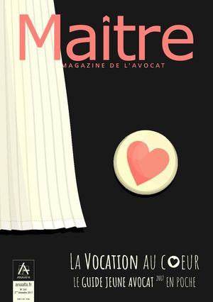 Maitre 241 Brochure Jeune Avocat [FREEACCESS]