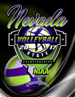 2017 NIAA State Volleyball Championships