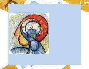 Circuito De Papez : Sistemas reguladores de emociones by kevin segura on prezi