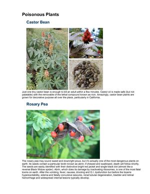 Food Poisonous Plants
