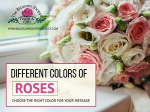 "Boynton Beach Florist Explains ""Different Colors of Roses"""