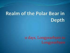 Realm Of The Polar Bear In Depth Brave Women Travel