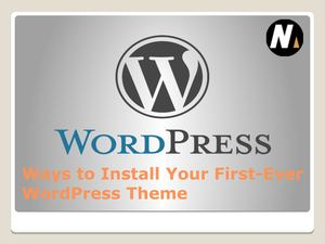 Ways To Install Your First Ever Word Press Theme