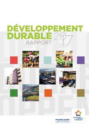 Rapport Developpement Durable 2017