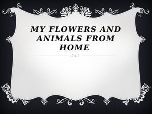 My Lovely Flowers And Pets