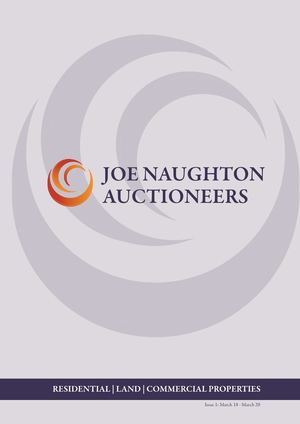 Joe Naughton Brochure