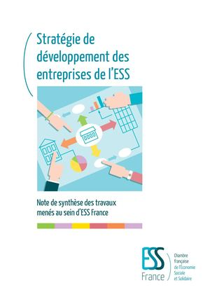 2018 03 15 Ess France Strategie Developpement