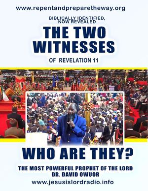 Who Are The Two Witnesses Of Revelation 11
