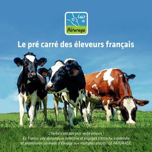 Lait De Pâturage 4 Pages Producteurs Transformateurs 2018 02 22
