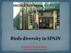 Andalusian And Spanish Birds Diversity (1)