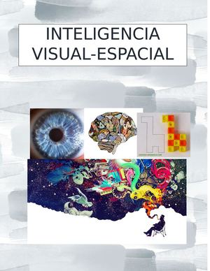 Inteligencia Visual Espacial